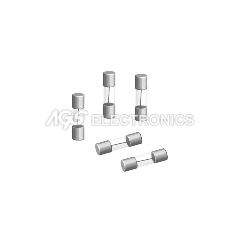 10 x FUSE FUSIBILE 5mmx20mm FAST RAPIDO 0.5A 500mA (10 pezzi)